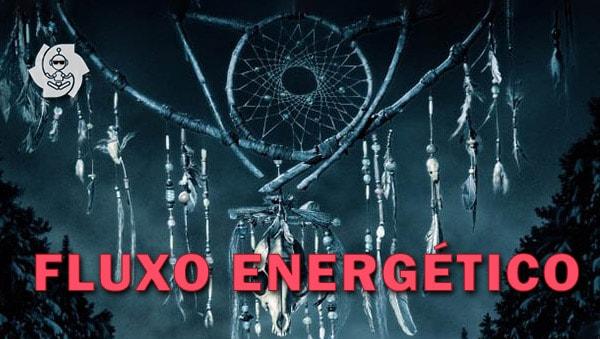 FLUXO ENERGÉTICO