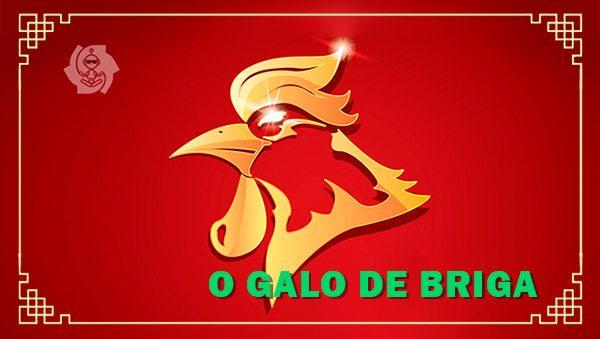 O GALO DE BRIGA