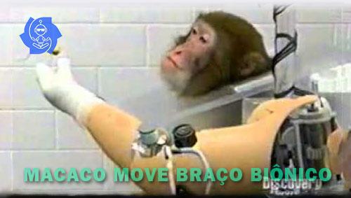 MACACO MOVE BRAÇO BIÔNICO