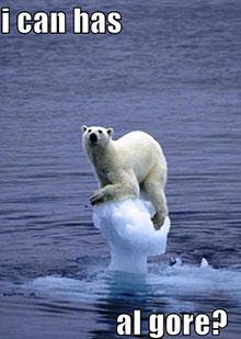 Urso chamando Al Gore